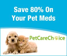 PetCareChoice is a leading online pet pharmacy that strives to achieve quality service by dispensing superior products at affordable prices. We look forward to developing a great relationship with you and your pet. Pet Insurance Reviews, Pet Health Insurance, Best Pet Insurance, Animals For Kids, Cute Animals, Pet Meds, Kitten Care, Pet Fish, Love Your Pet