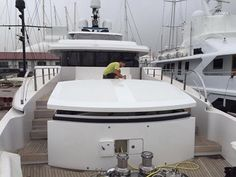The final touches are being put on the fully re-finished M/Y Kraken (ex Natalie). Our #TeamInLimeGreen have just finished the dash board wrap in Hexis #CarbonEffectVinyl and she is looking really top notch! We are looking forward to seeing finished article in all her glory very soon. #TransformYourYacht www.wildgroupinternational.com