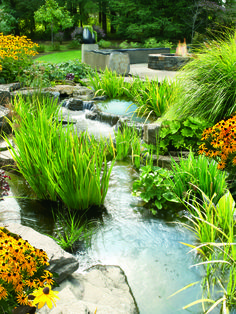 1000 images about vis dam tuin on pinterest ponds for Koi pond hiding places