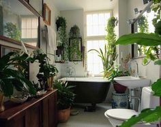 "The Best Bathroom Plants For Your Interior - The ""green"" bathroom - Best Bathroom Plants, Tropical Bathroom, Garden Bathroom, Botanical Bathroom, Bohemian Bathroom, Bathroom Green, Zen Bathroom, Natural Bathroom, Bedroom Plants"