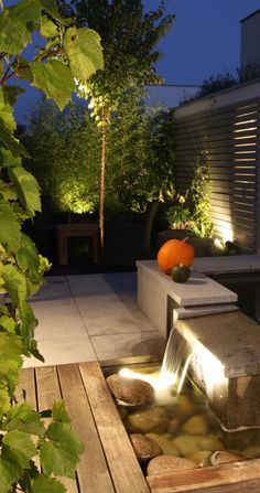 osvětlení v zahradě / garden lighting Camels, Suncatchers, Water Features, Land Scape, Waterfall, Patio, Lighting, Garden, Plants