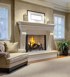 Fireplace Doors With Blower For Wood Burning Fire Pit Pinterest Make Your Doors And Woods