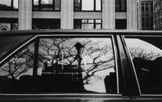 David Bradford: Drive-By Shootings- reflections/windows
