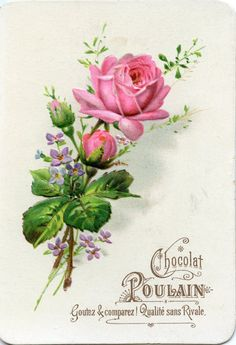 chocolat poulain - roses - x - 3 Art Vintage, Decoupage Vintage, Decoupage Paper, Vintage Paper, Vintage Flowers, Vintage Images, Vintage Prints, Vintage Labels, Vintage Ephemera