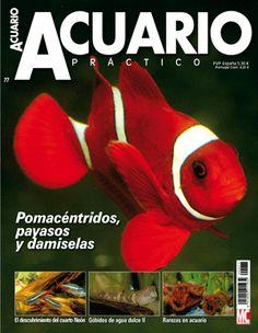 http://www.acuaristica.com/blog/2012/03/carta-abierta-a-los-lectores-de-acuario-practico/