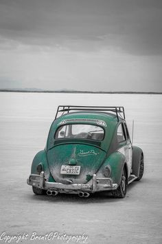 VW Volkswagen, Vw Classic, Beetle Car, Combi Vw, Vw Cars, Buggy, Vw Beetles, Cool Cars, Sedans