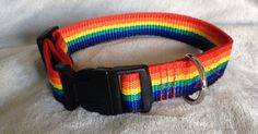 LGBT Adjuastable Dog Collar - Medium Breeds by ElaynesBoutique on Etsy Handmade Dog Collars, Four Legged, Rescue Dogs, I Love Dogs, Cool Things To Make, Fur Babies, Lgbt, Cool Designs, Boutique