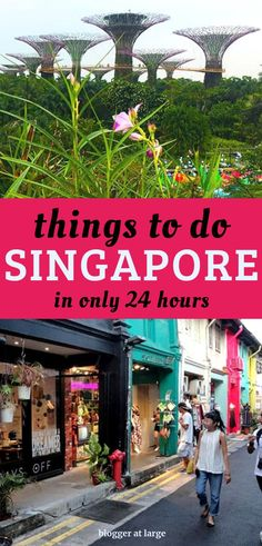 Discover just how many things you can do during a 24-hour visit to Singapore. #singapore #travel #shop #sightsee #gardens #daytrip