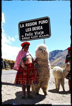 Peru.Cusco Puno. Volunteering abroad in Peru / South America with #HOOP. Help as a #Volunteer with the #Education of English for the #Children and discover the beauty of Arequípa. #Travel to Colca, Cusco, Machu Picchu, Lima, Amazonas etc. For more information check out www.hoopperu.org/ #hoop #tradition #culture Bolivia, Ecuador, Peruvian People, Inca Empire, Animal Fibres, Lake Titicaca, Peru Travel, Machu Picchu, Travel Around The World