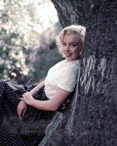 Marilyn Monroe photo MMTREE350NOWORDS.gif