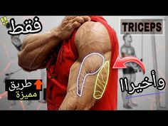Triceps Workout, Fat Fast, Lose Belly Fat, Training, Exercises, Belly Fat Loss, Stomach Fat Loss