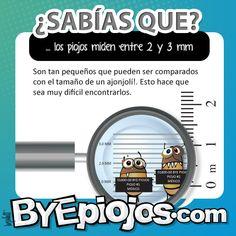 Mata Piojos Shampoo,2-Ounces (Pack of 3) - sears.com