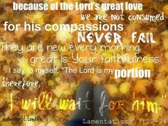 Google Image Result for http://cdnimg.visualizeus.com/thumbs/42/60/bible,fall,lamentations,photography,quote-4260f76bda4e2813bedd4d521c047853_h.jpg