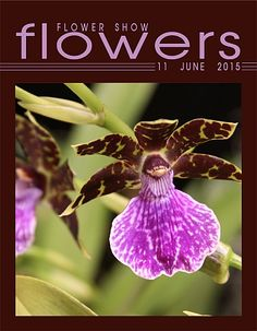 11 June  2015… A Year in Flowers PLANT LIST: Orchid www.FlowerShowFlowers.com  FLOWER SHOW FLOWERS (the magazine) For Tips, Pics and Helpful Hint http://www.flowershowflowers.com/magazine.html