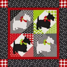 Great Scott Color Option quilt at All People Quilt