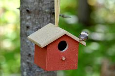 Cabane d'oiseau en forêt - Bird house in woods Birds, Outdoor Decor, Nature, House, Home Decor, Cabin, Houses, Bird, Haus