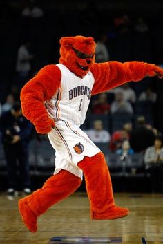 Rufus Lynx & the Charlotte Bobcats support Autism Speaks Greater Carolinas Chapter!