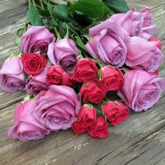 This can be the result of diligent gardening; such beautiful Roses in my favorite colors