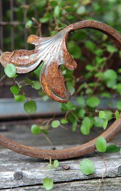 de-vine ❀ ~  ◊ photo from 'vagabond soul' at tumblr (via 'hwitt blogg' : friskvård….)
