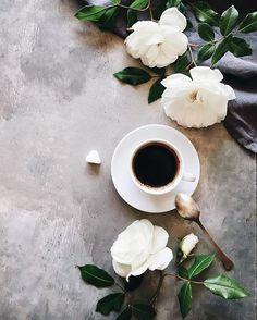 Today coffee with garden roses which smell of honey.Have a nice day!☕️ Как увидела эти розы,не смогла пройти мимо,так и представила их с чашечкой кофе.Всем доброго утра!☕️