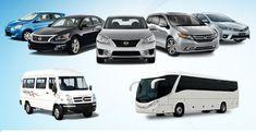 10 Best Getting Your Own Vehicle In Rarotonga Made Easier Ideas Car Hire Car Rental Rarotonga