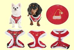 Puppia Harness, Luxury Pet Collections- Distributors of Puppia products in Canada What Dogs, Red Plaid, 2 Colours, Dog Cat, Santa, Pets, Medium, Fall, Winter
