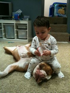 Vicious child attacks helpless pit bull!