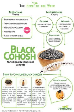 HerbaZest - Black Cohosh is very useful in the treatment of hormonal imbalance. It is also available as a homeopathic remedy Tags: Natural Cold Remedies, Cold Home Remedies, Cough Remedies, Herbal Remedies, Natural Medicine, Herbal Medicine, Déséquilibre Hormonal, Salud Natural, Hormone Imbalance