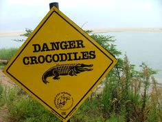 Lake St Lucia and Wetland Sign Boards, Self Catering Cottages, Kwazulu Natal, Crocodiles, Home And Away, Caribbean, Stuff To Do, Wildlife, Coast
