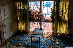 Living (flora) room.