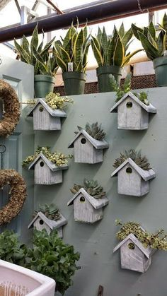 Bird house planters ~ cutouts in the tops for planting succulents or herbs ~ these are inside a greenhouse but could also mount along a backyard fence or in a garden | from I Love My Garden #buildabirdhouse #birdhouses