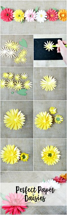 Paper Daisy how to instructions. DIY paper flowers. Printable templates.