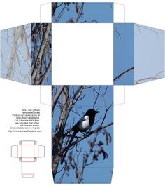 Don't Eat the Paste: Corvid Boxes- Magpie and Raven. nice little box, easy to fold.
