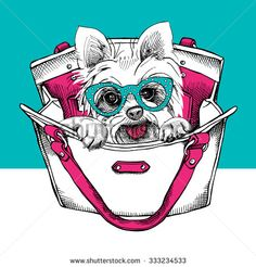 The poster with the image of the dog Yorkshire terrier in the bag. Vector illustration.