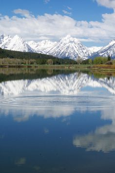 The MAJESTIC TETONS in Wyoming -- (Image by Dr. Joseph T. McGinn) -- See published slideshow of highlights in Grand Teton National Park and Jackson Hole, Wyoming -- http://www.examiner.com/article/awesome-famly-travel-grand-teton-national-park-and-jackson-hole-wyoming