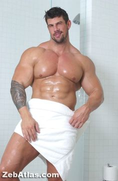 Zeb Atlas Ass 20