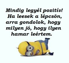 Ja,de nem,és nem! Really Funny, Pranks, Sarcasm, Minions, Funny Jokes, Einstein, Haha, Have Fun, Motivational Quotes