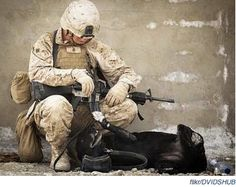 Pets for Patriots  Great story about the amazing bonds that form between military explosive detector dogs and their human handlers. The chemistry and communication in these teams is crucial, and can make the difference between life and death.