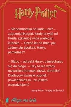 Harry Potter i Insygnia Śmierci - najlepsze fragmenty, najzabawniejsze cytaty | Hagrid #HarryPotter #cytat #cytaty #książki Harry Potter Humor, Harry Potter Films, Bonnie Wright, Harry Potter Pictures, Harry Potter Wallpaper, Ginny Weasley, Potter Facts, Draco Malfoy, Virgo