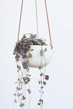 This white hanging planter is made in a minimalist style. The white ceramic planter lends visual interest in any space. This wall planter is the perfect size for a small plant or succulent.