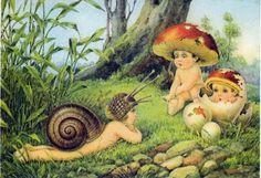 Fairy snail and fairy mushrooms (vintage)
