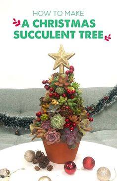 Succulent Tree, Christmas Wreaths, Christmas Tree, Holiday Decorating, Christmas And New Year, Tablescapes, Flower Arrangements, Succulents, Centerpieces