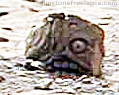 Mars Rover Accidentally Photographs Unmistakable Mayan/Aztec Style Statue Head