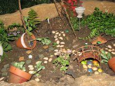 Fairy Garden Plants | FAIRY GARDENS