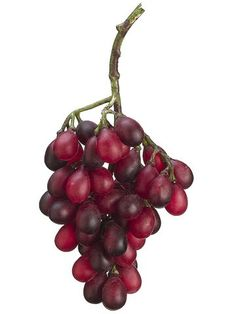 11' Grape Cluster Purple (Pack of 12) >>> More info could be found at the image url.