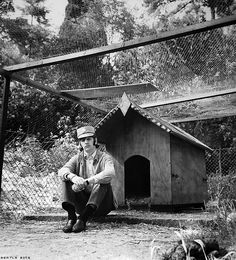 Ringo Starr maybe on guard close to the dog house on the garden of his house in Weybridge. Ringo Starr Photograph, The Beatles 1960, Richard Starkey, Lennon And Mccartney, The Fab Four, Dog Houses, My Favorite Music, Under The Sea, Great Photos