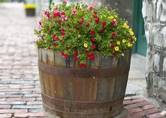 Wine barrel planter used wine or whiskey barrels into a flower or edible garden planter that . Barrel Garden Ideas, Barrel Garden Planters, Wine Barrel Garden, Whiskey Barrel Planter, Garden Plants, Whiskey Barrels, Garden Rack, Potted Plants, Barrel Flowers