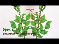 Бокаловидная роза. Урок 8 - Листья / Cup-shaped rose. Lesson 8 - Leaves - YouTube