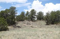 Starfire Ranch Lot 61, Quemado, NM 87829