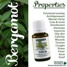 Bergamot is a sedative—which allows those with anxiety or stress to relax. Additionally, certain components of bergamot oil are natural antidepressants. They stimulate a feeling of joy and energy, and they also stimulate hormonal secretions—this means that they help to regulate metabolic rates. In fact, this hormonal aspect of bergamot is the reason that it is such a powerful oil for neurological and mental conditions and issues. The scent helps to relieve anxiety, stress, and depression.